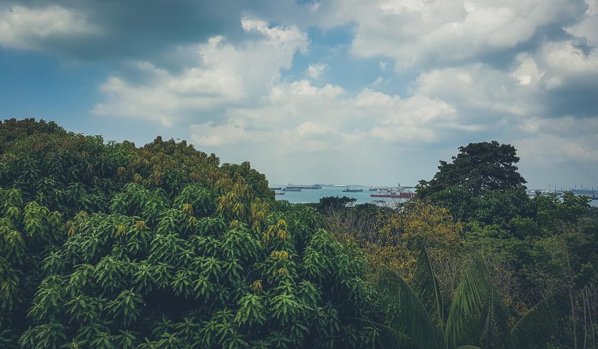 Singapore 2019-12
