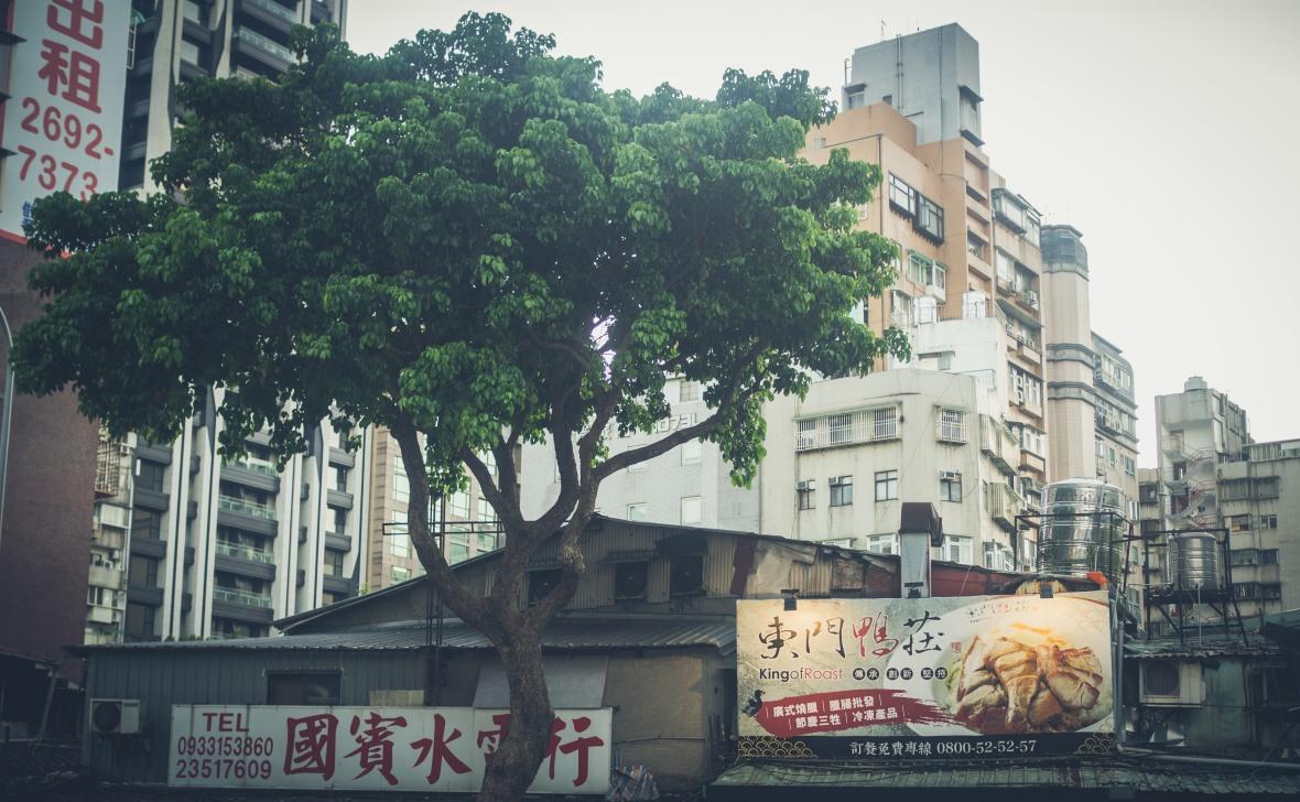 Taipei 2019-9