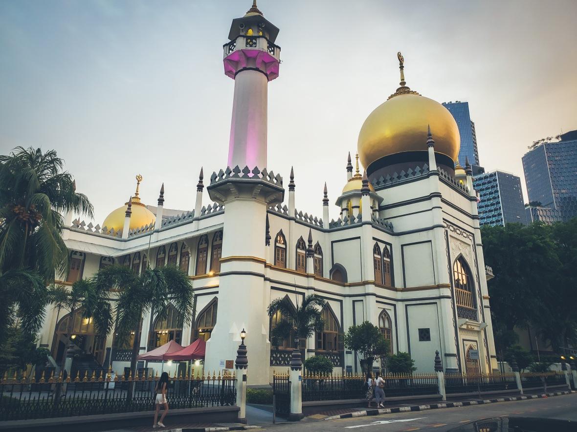 Singapore 2 2019-24