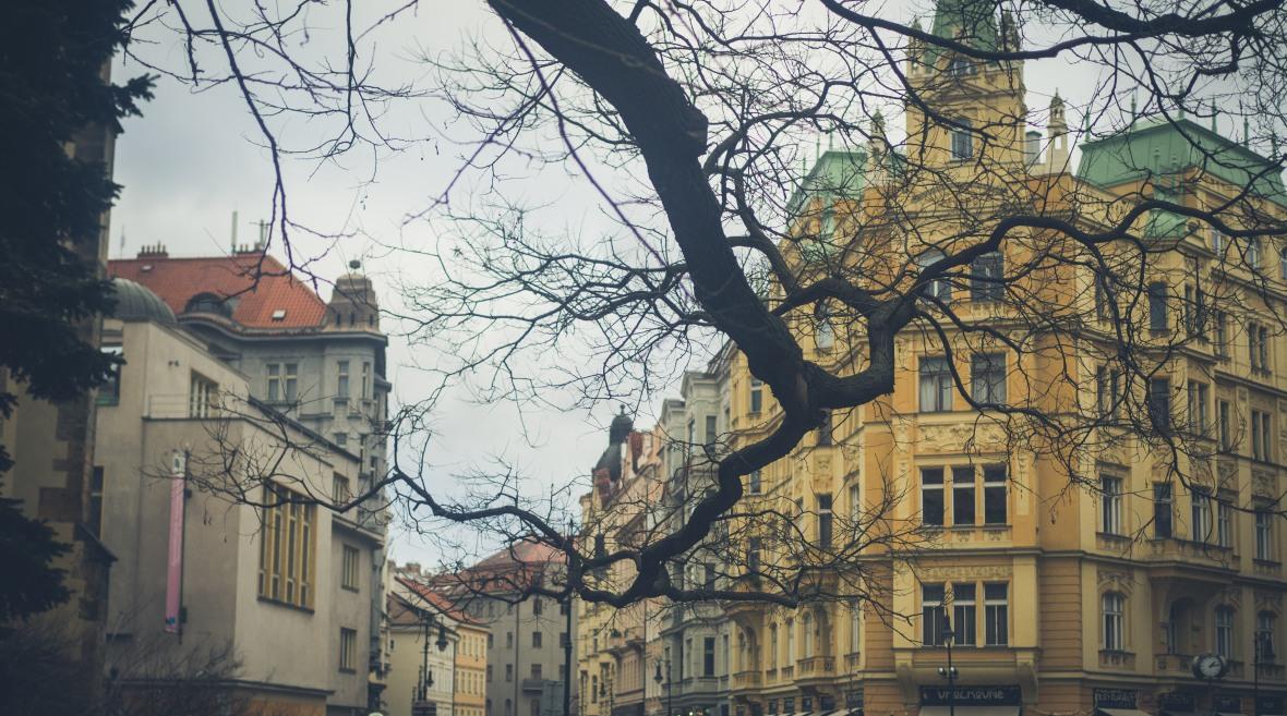 Vienna & Prague 2019-260