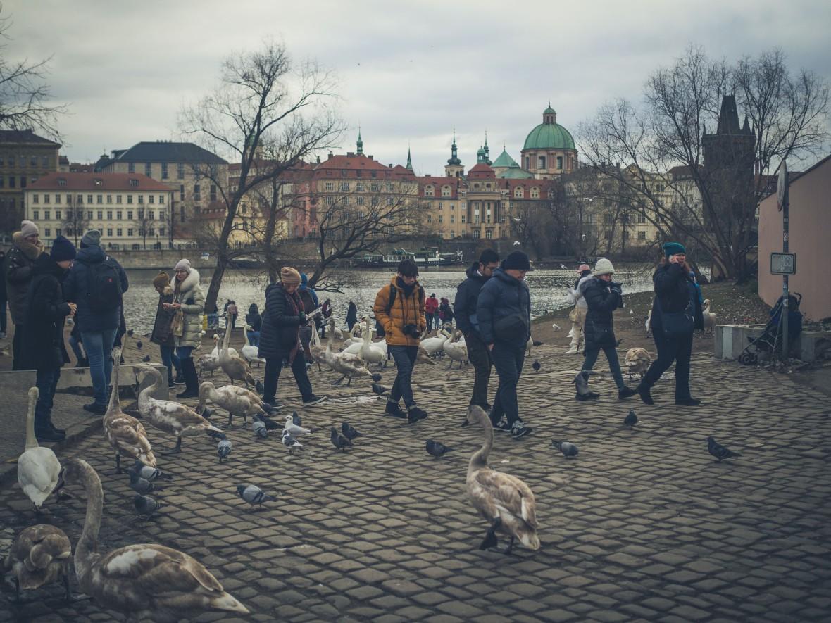 Vienna & Prague 2019-274