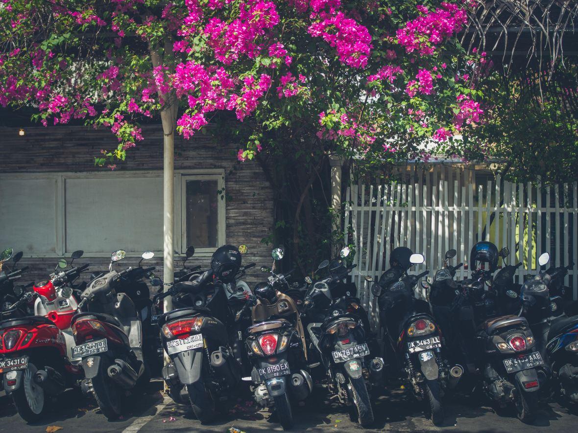Bali 2018-65