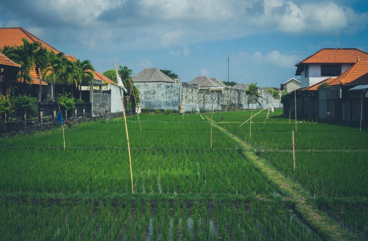 Bali 2018-70