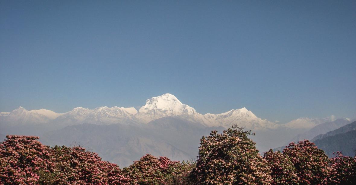 Nepal 2010-114