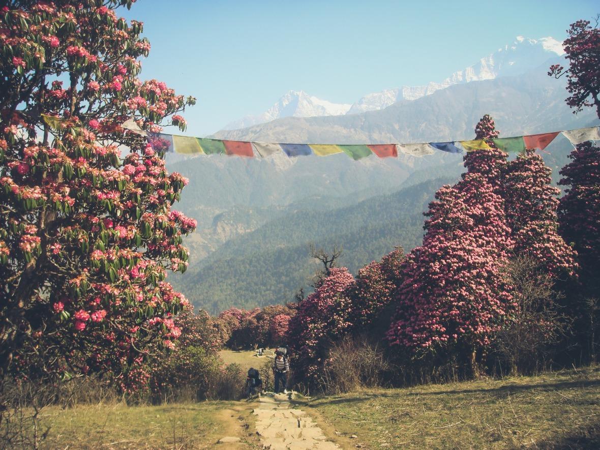 Nepal 2010-116