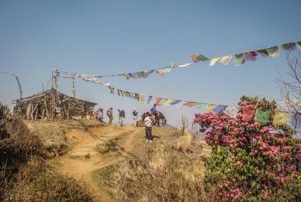 Nepal 2010-128