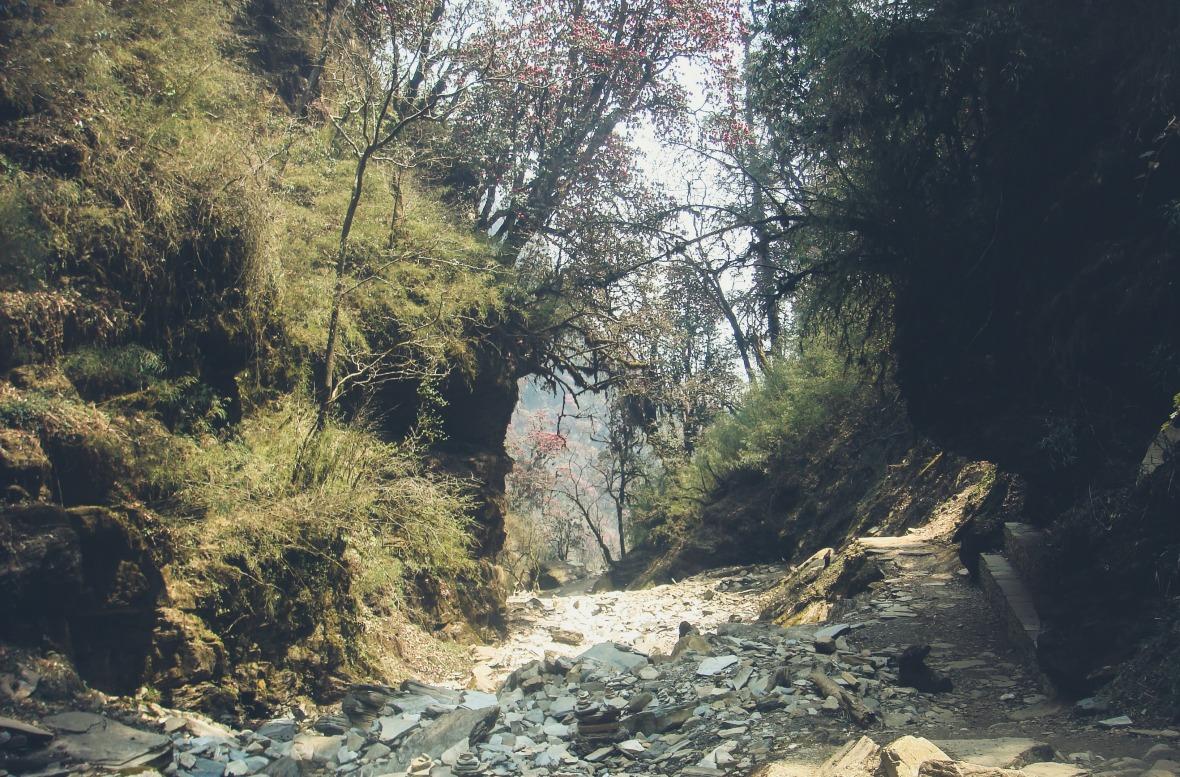 Nepal 2010-130