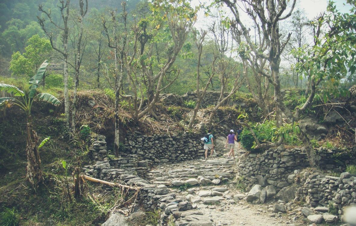 Nepal 2010-28