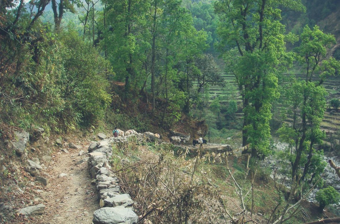 Nepal 2010-38
