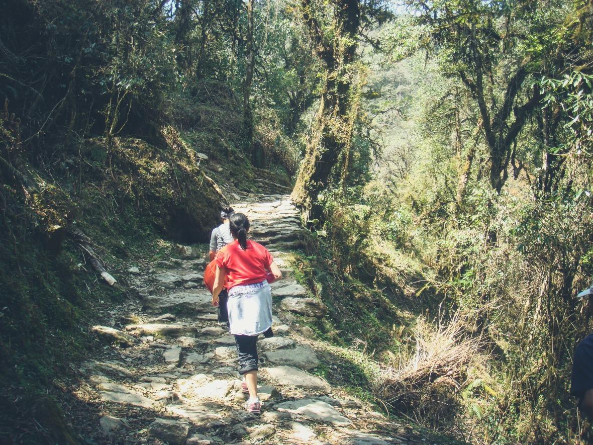 Nepal 2010-70