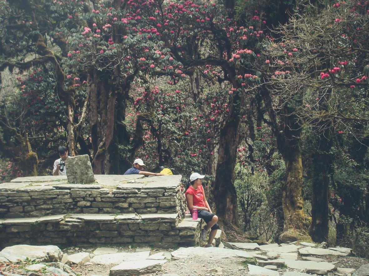 Nepal 2010-81