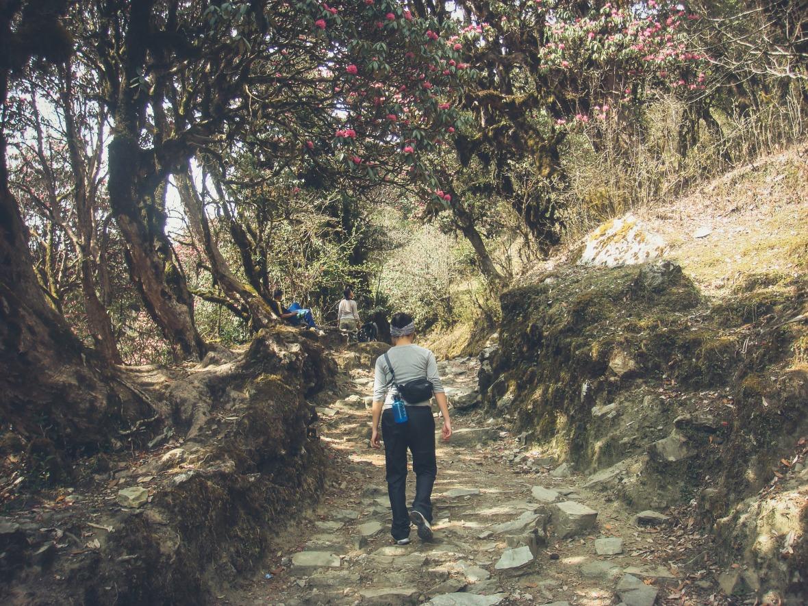 Nepal 2010-83