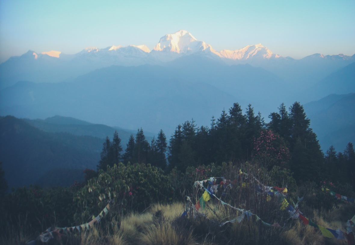Nepal 2010-91