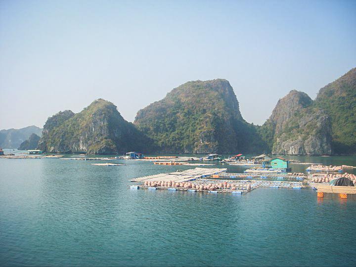 Vietnam 2011-50