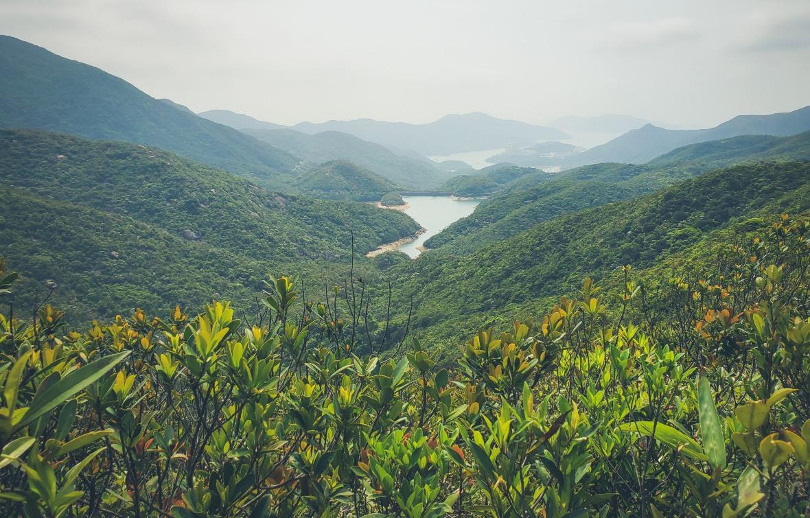 Hong Kong Hiking Apr 2020-23