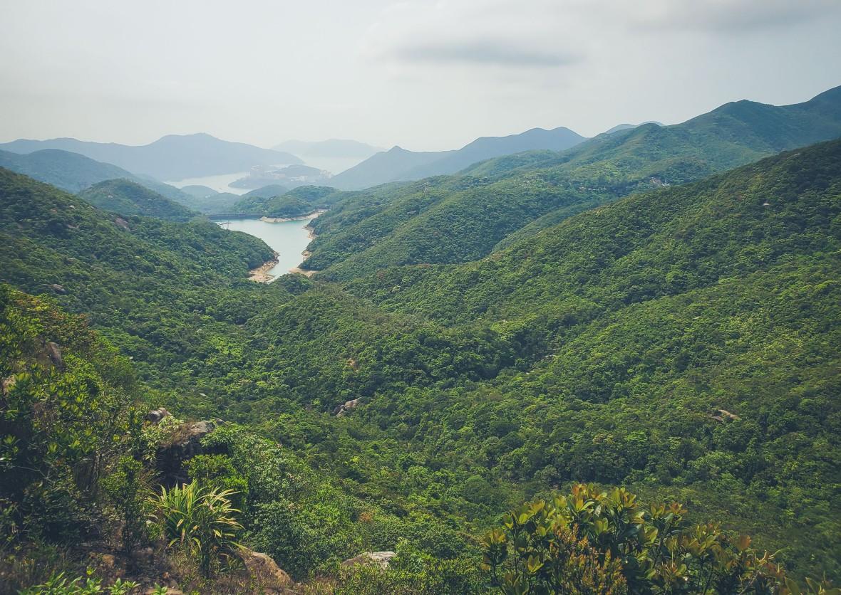 Hong Kong Hiking Apr 2020-24