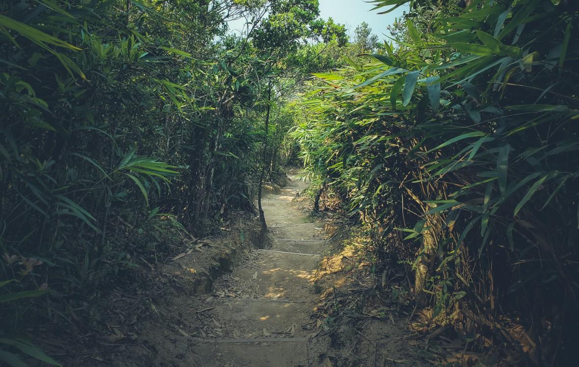 Hong Kong Hiking Apr 2020-7